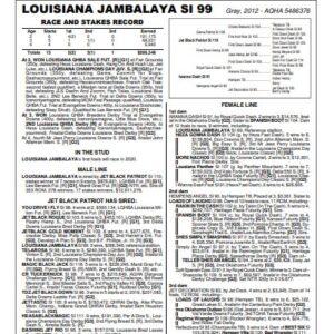 Louisiana Jambalaya   AQHA