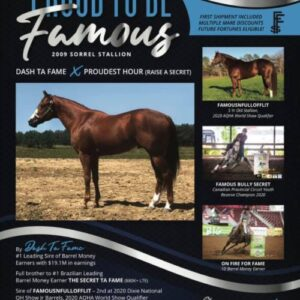 Proud To Be Famous   AQHA